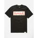 DIAMOND SUPPLY CO. Flamingo Box Logo Mens T-Shirt