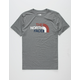 THE NORTH FACE Americana Mens T-Shirt