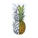 O'NEILL Lahaina Pineapple Sticker