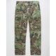 NIKE SB Flex Mens Cargo Pants