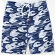 NIKE SB Waves Mens Boardshorts