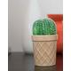 Barrel Ice Cream Green Succulent