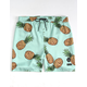LIRA Pineapple Boys Volley Shorts