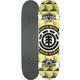 ELEMENT Conifer Full Complete Skateboard