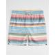 MICROS Blanket Stripe Boys Boardshorts