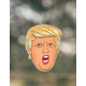 PRO AND HOP El Presidente Trump Air Freshener