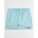 RUSTY Barred Mens Volley Shorts