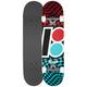 PLAN B Team Checker Full Complete Skateboard