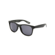 VANS Spicoli 4 Black Frosted Sunglasses