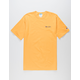 CHAMPION Embroidered Script Logo Gold & Blue Mens T-Shirt