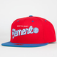 ELEMENT Your City Starter Mens Snapback Hat
