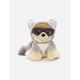 Boo Raccoon Plush