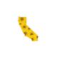 Sunflower State Sticker