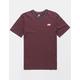 NIKE SB Burgundy Mens T-Shirt