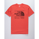 THE NORTH FACE Vintage Pyrenees Mens T-Shirt