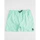 VOLCOM Lido Mint Mens Volley Shorts