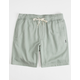 O'NEILL Willow Granite Mens Shorts