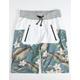 ASPHALT Kanga Mens Shorts