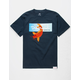 DIAMOND SUPPLY CO. Gold Koi Box Mens T-Shirt