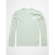 THE NORTH FACE Washed Logo Mint Mens T-Shirt
