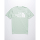 THE NORTH FACE Half Dome Light Green Mens T-Shirt