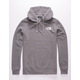 THE NORTH FACE Red Box Gray Mens Hoodie