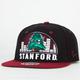 ZEPHYR Stanford Equalizer Mens Snapback Hat