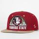 ZEPHYR Florida State Equalizer Mens Snapback Hat