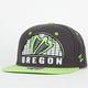 ZEPHYR Oregon Equalizer Mens Snapback Hat