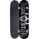 DARKSTAR Ruin Full Complete Skateboard