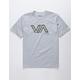 RVCA Stencil VA Heather Gray Boys T-Shirt