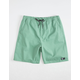 LIRA Forever Volley 2.0 Ivy Mens Volley Shorts