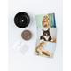 RUNNING PRESS Cats On Catnip Grow-Your-Own Catnip Kit