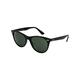 RAY-BAN Wayfarer II Classic Black & Green Classic Polarized Sunglasses