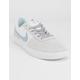 NIKE SB Team Classic Vast Gray & White Shoes