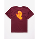 SANTA CRUZ Flame Hand Burgundy Boys T-Shirt