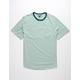 DISTORTION Trip Stripe Sage Mens T-Shirt