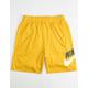 NIKE SB Dri-FIT Sunday Gold Mens Shorts