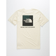 THE NORTH FACE Triblend Red Box Off White Boys T-Shirt
