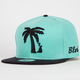 BLVD T Mens Snapback Hat