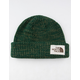THE NORTH FACE Salty Dog Green Beanie