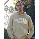 THE NORTH FACE Half Dome Mens Khaki Hoodie