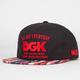 DGK All Day 94 Mens Strapback Hat