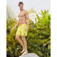 QUIKSILVER Everyday Mens Volley Shorts
