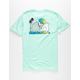 QUIKSILVER Strictly Roots Mens T-Shirt