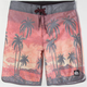 QUIKSILVER Sky Palms Mens Boardshorts