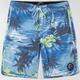 O'NEILL Paradise Mens Boardshorts