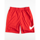 NIKE SB Dri-FIT Sunday Mens Red Shorts