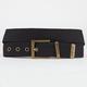 Brass Web Belt