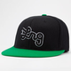 LRG Core Collection Roots Mens Hat